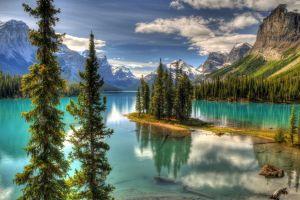 nature mountains pine trees island maligne lake landscape canada
