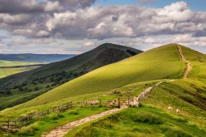 nature sky sheep animals hills fence forest landscape grass stones field trees path england clouds
