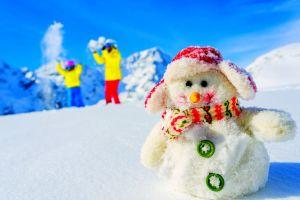 nature snow snowmen