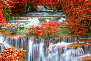 nature stream red leaves creeks fall waterfall long exposure