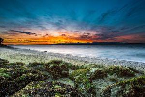 nature sunlight sky coast