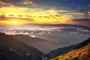 nature trees clouds valley romania sunset mountains shrubs mist sky landscape yellow dry grass