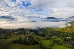 nature trees mist new zealand clouds sky landscape panoramas mountains field morning village