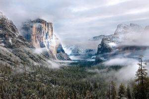 nature yosemite national park morning rock winter usa mist pine trees snow mountains forest landscape snowy peak hills clouds
