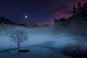 norway hills snow trees moonlight moon mist starry night frost shrubs lake winter landscape nature forest