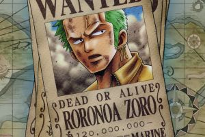 one piece roronoa zoro anime