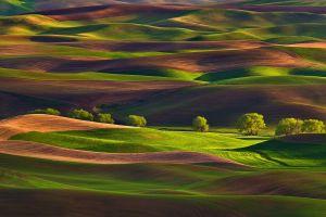 outdoors landscape field
