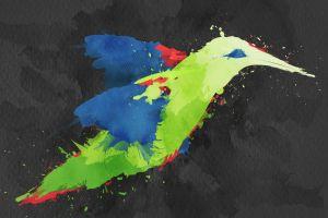 painting colibri (bird) birds