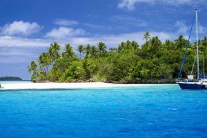 palm trees nature sea boat