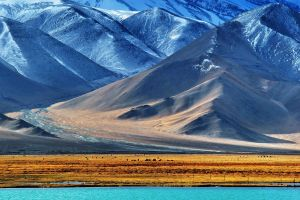 pamir mountains landscape animals snow lake hills nature water tajikistan field fence valley mountains snowy peak