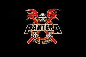 pantera simple background skull