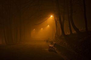 park bench orange mist night