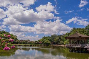 park landscape sky clouds water