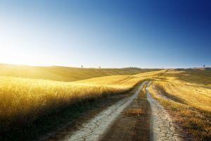 path nature field