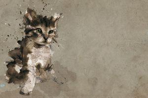 pet paper text kittens digital art baby animals paint splatter painting cats animals