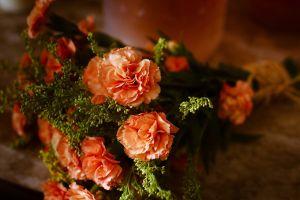 photography orange flowers soft bouquet flowers