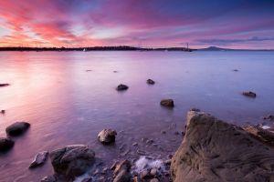 photography rangitoto water