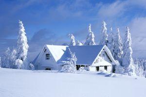 pine trees cabin white hut nordic landscapes snow landscape winter