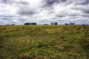 plains field landscape hdr