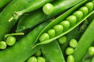 plants nature peas
