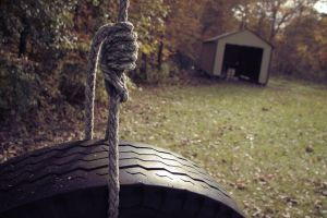 plants outdoors ropes tires