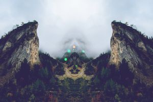 prism mirrored mountains forest