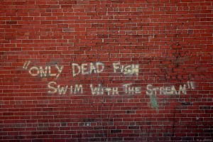 quote bricks wall text