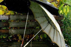 rain outdoors bench umbrella