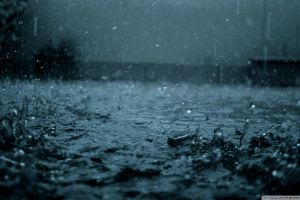 rain water water drops
