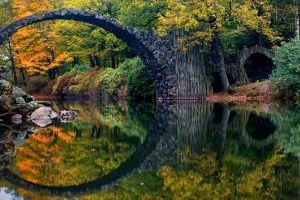 reflection nature forest colorful germany shrubs water river bridge fall trees landscape