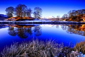 reflection winter trees water landscape snow