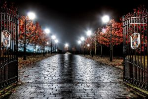 road artificial lights leaves gates trees