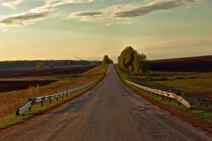 road fence landscape nature