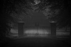 road grass mist landscape dark nature door trees gates monochrome