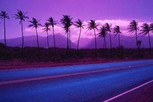 road mountains palm trees purple