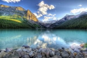 rock banff national park nature lake louise forest lake landscape mountains