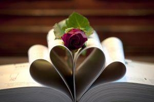 rose depth of field flowers books