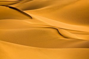 sand landscape desert
