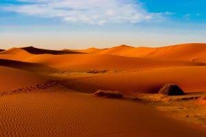 sand orange desert landscape morocco dune nature sahara