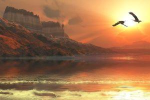 sea flying beach sun rays nature eagle mist erosion landscape sunlight mountains cliff