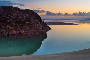 sea horizon starfish landscape sunset animals