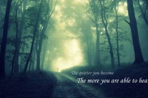silent quote backtrack forest jungle