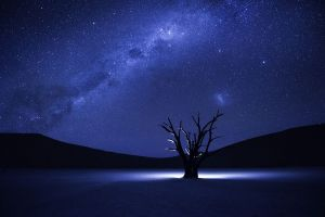 silhouette namibia stars milky way trees glowing night purple starry night hills