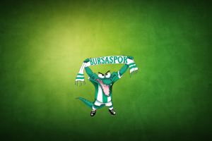 simple background bursaspor green background