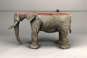 skin wires artwork fangs digital art 3d printer ifaw simple background 3d object  photo manipulation animals elephant