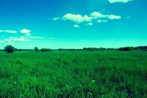 sky landscape nature field