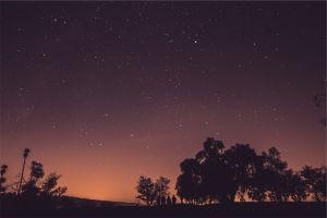 sky night people stars