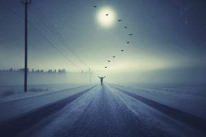 sky road alone power lines dark