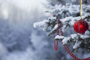 snow christmas ornaments  christmas