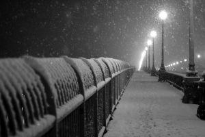 snow monochrome winter